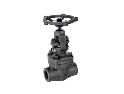 Sw Ended Forged Steel Gate Valve